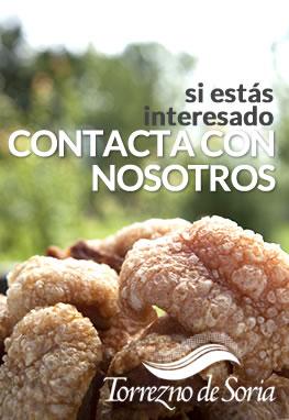 Torrezno de Soria. Contactar